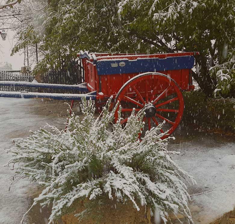 carro nevada - Casa rural El Canjilón - Montefrio
